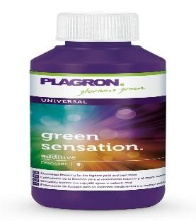 Vaporisateur PAX 2 - Rouge