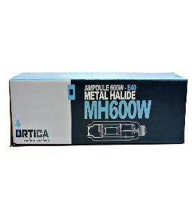Kit complet 600W ESSENTIEL HPS ETI Class2 + Réf 47cm + Ortica
