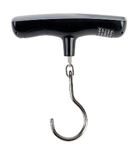 HOMEbox® Ambient 240x240x200cm