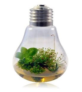 GO Urtica 1L