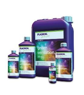 Thermomètre/Hygromètre Digital BASIC